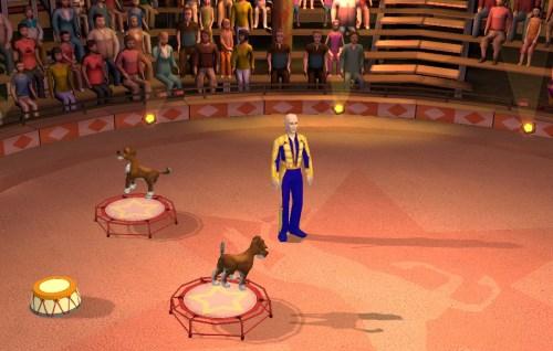 арена цирка