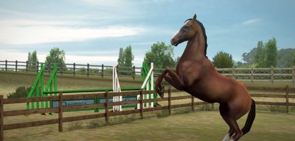 виртуальная лошадь на ферме