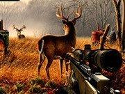 Игра Hunter 3d