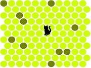 Игра Catch the cat