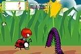Ladybird Racing