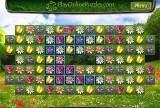 Flower Puzzle