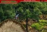 Игра Extreme Mountain Biking