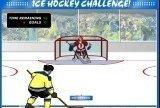 Игра Ice hockey challenge