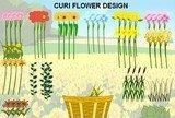 Curi flower design