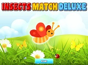 Insects Match Deluxe
