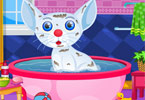 Играть Pet Cat Makeover