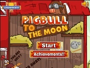 Pigbull to the Moon