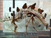 Игра Dinosaur Bones Puzzle