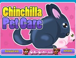 Chinchilla Pet Care
